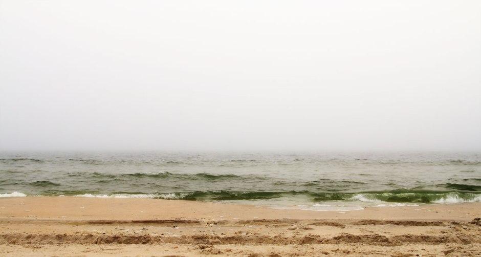 Visibility Shutdown