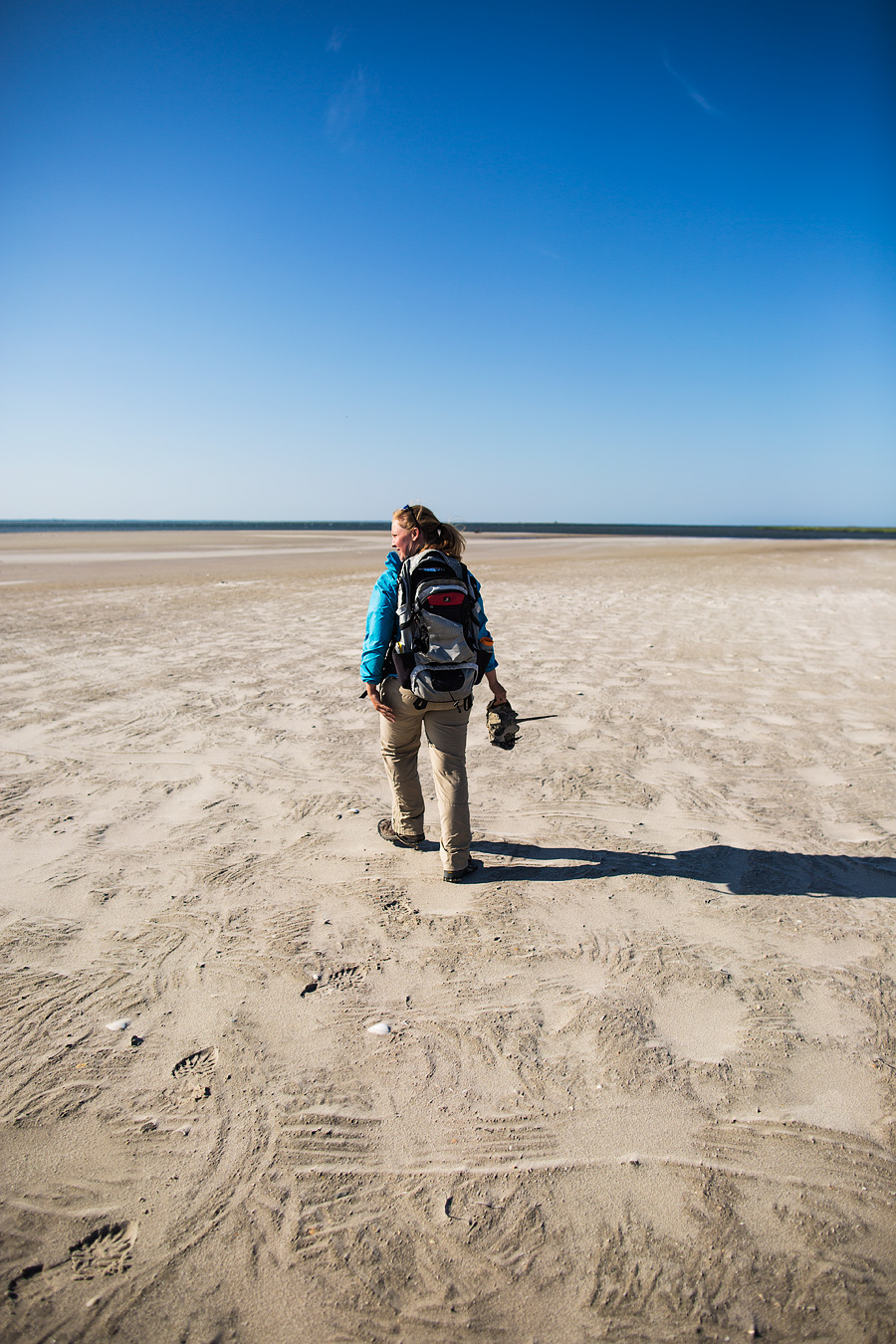 Allison helps a Horseshoe Crab who has lost her way in the Killing Fields.