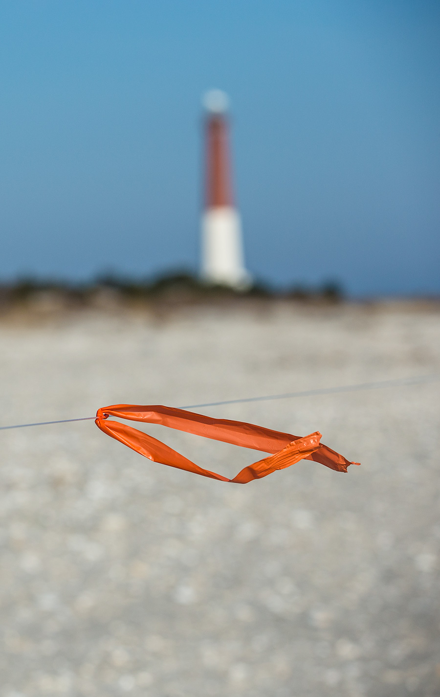 The Orange Flags Of The Wild-Lifeguards