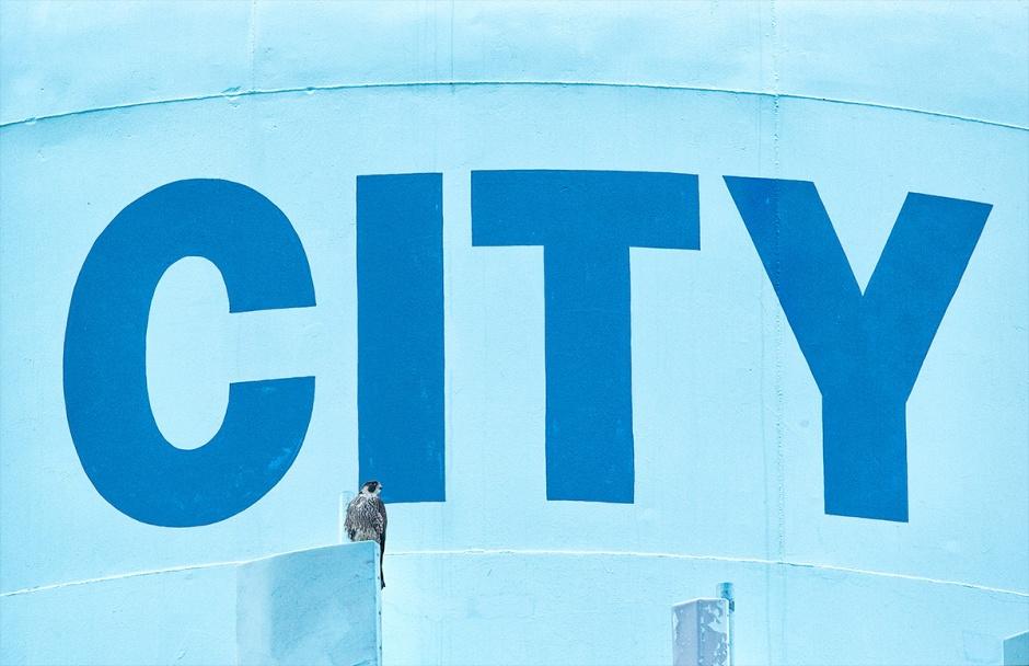 PEFA City