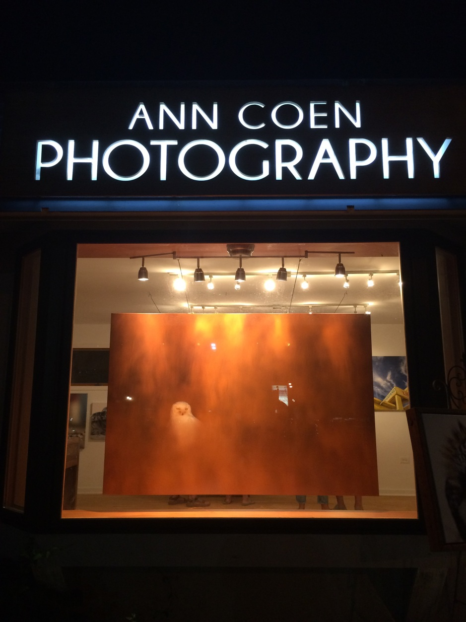 The True Masterpiece: Ann Coen and Amazing Gallery