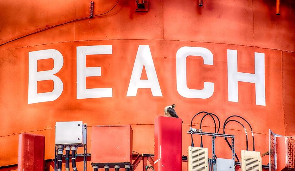 Beach PEFA II