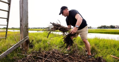 Bill gathers up the fallen nesting material below to help the Osprey rebuild.