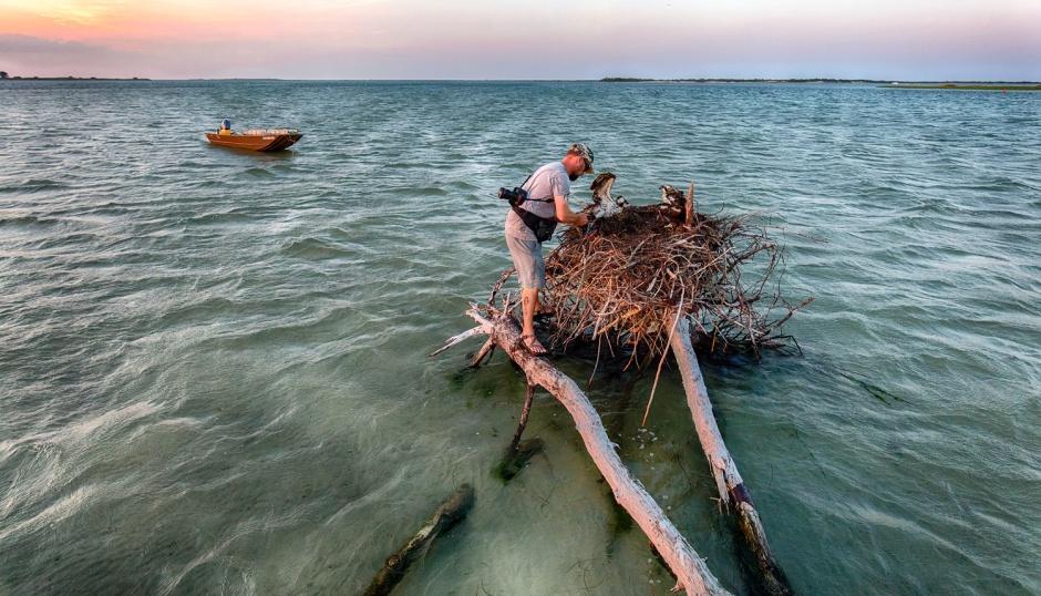 barnegat-bay-natural-nest