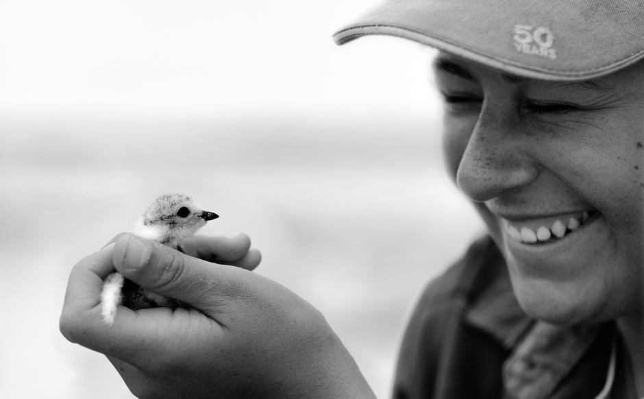 rebecca-linhart-with-plover