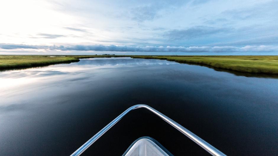boat-ride-through-the-marsh