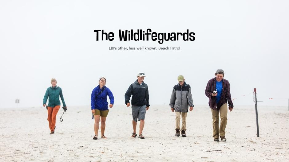 LBI-wildlifeguards